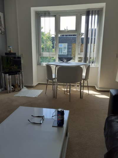 1 bedroom flat in worcester park  over 55