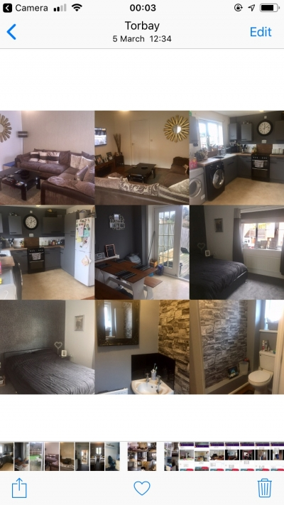 Exchange looking for a 3 bedroom house
